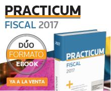 Practicum Fiscal 2017